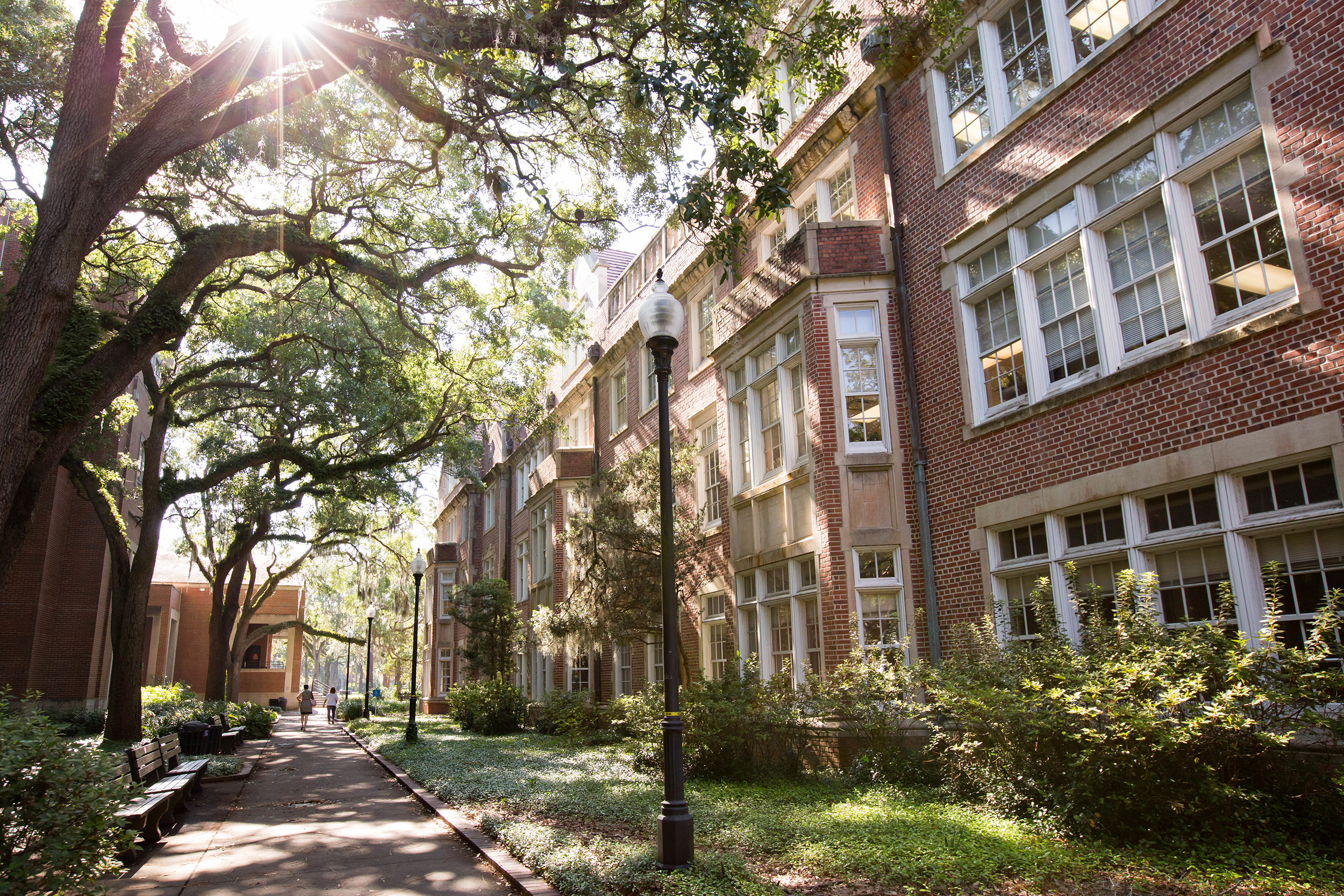 University of Florida is full of natural and architectural charm. (Source: University Relations)